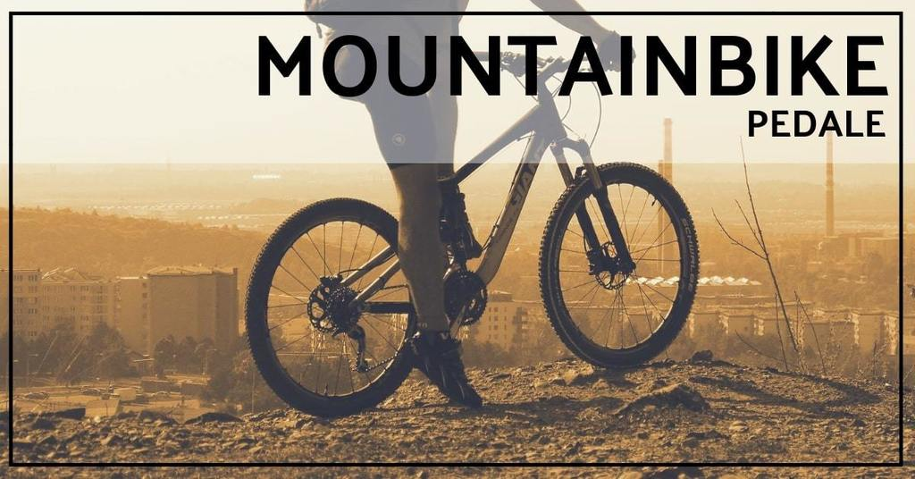 mountainbike pedale test